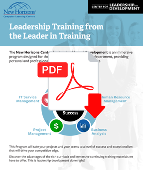 Leadership & Professional Development Paths